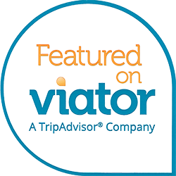 EckFoto Boston Freedom Trail Tour Featured on Viator, a Trip Advisor Company